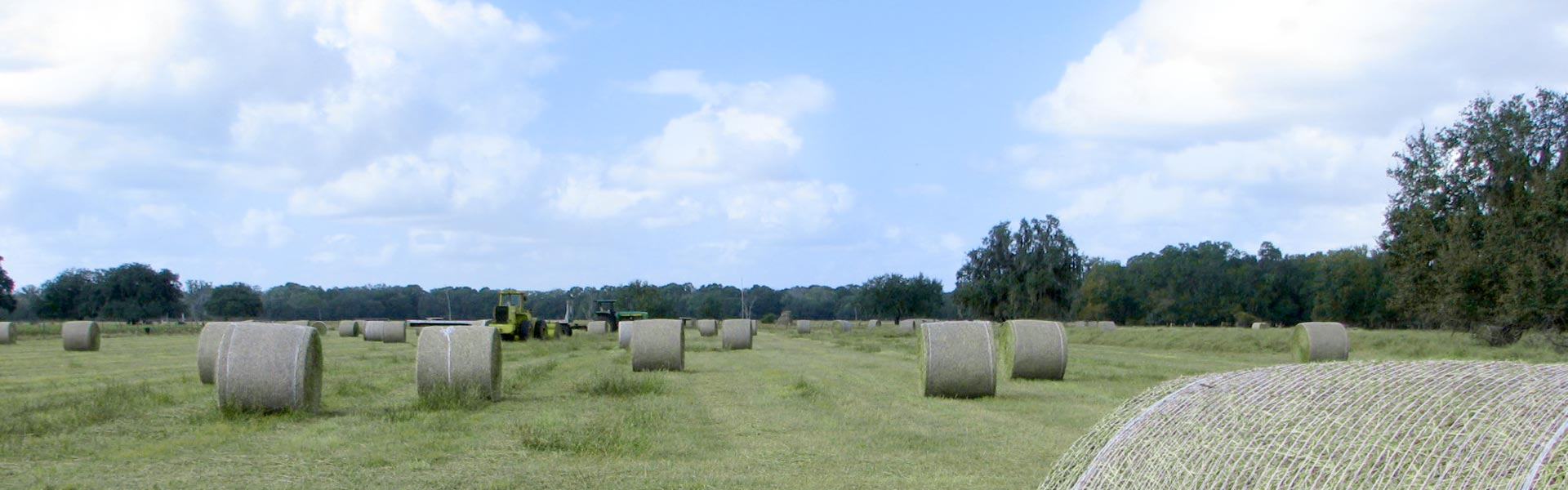 Farm-Land_rev